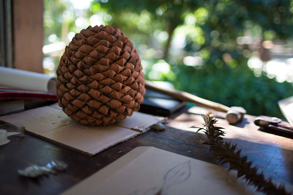 Bunya Inspiration Photo by Tim Johnson