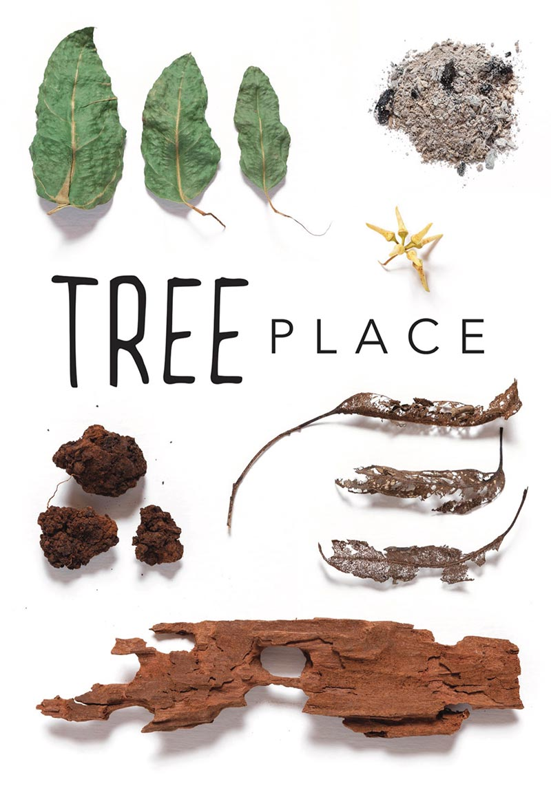 Tree Place | Exhibition